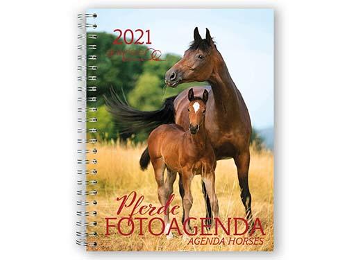 BOISELLE カレンダー2021 アジェンダ Pferde (フェアデ)