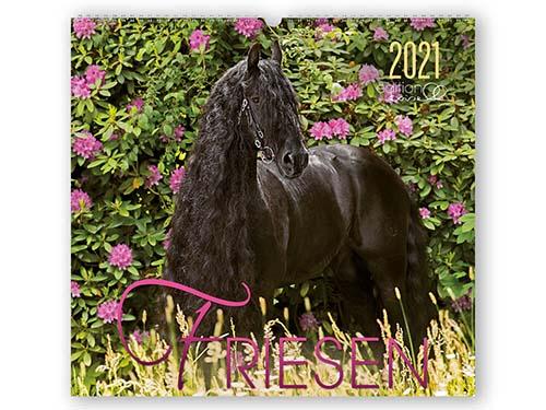 BOISELLE カレンダー2021 Lサイズ Friesen (フリージアン)