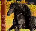 BOISELLE カレンダー2019 Mサイズ Friesen(フリージアン)