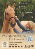 馬への指圧の基本 DVD