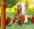 BOISELLE カレンダー2020 Mサイズ Haflinger (ハフリンガー)