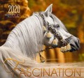 BOISELLE カレンダー2020 Lサイズ Fascination