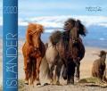 BOISELLE カレンダー2020 Mサイズ Island(アイスランド)