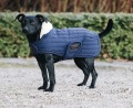 KENTUCKY Dog Coat Pearl