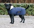 KENTUCKY Dog Coat Pearl