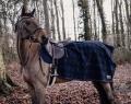 KENTUCKY Quarter Rug Heavy Fleece