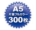 A5片面フルカラー300枚