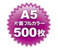 A5片面フルカラー500枚