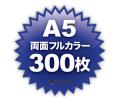 A5両面フルカラー300枚
