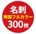 ryo300