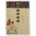 夕陽美 太極拳 太極拳用品 太極拳グッズ 武術 カンフー DVD VCD