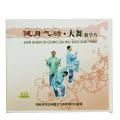 健身気功_大舞 太極拳 太極拳用品 太極拳グッズ 武術 カンフー DVD VCD
