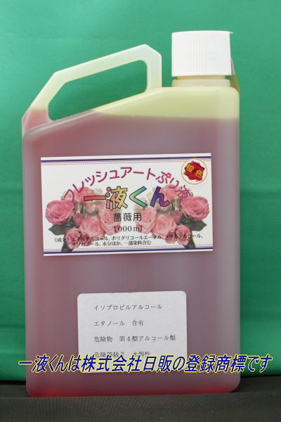 薔薇用一液くん:橙色
