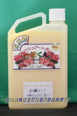 薔薇用:京淡彩一液くん:淡黄色
