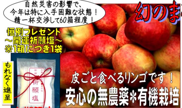 【有機栽培】幻のまるかじり林檎+特典:祈願塩