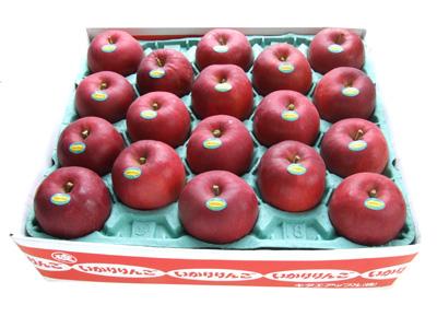 青森りんご紅玉18玉