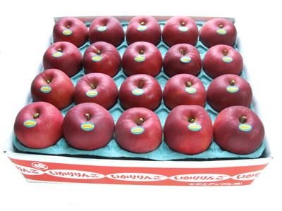 青森りんご紅玉20玉