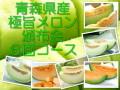 青森県産メロン/頒布会(6回コース)【送料無料】8キロ6玉入り