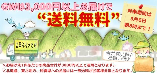GWは3000円以上で送料無料2021