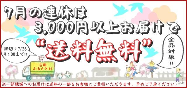 7月連休は3000円以上お届けで送料無料