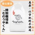 長野県産 むのうやくんの特別栽培米こしひかり特A5kg