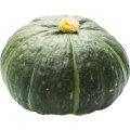 北海道産えびす南瓜1.2kg