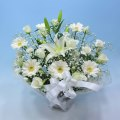 NO.24 バラと百合のボリュームアレンジ(ホワイト)