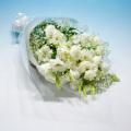 NO.43 純白トルコキキョウの花束