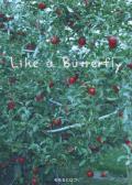 モモセヒロコ  Like a Butterfly  (写真集)