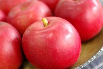 蜜入の紅玉(こうぎょく)りんご通販 樹上完熟された!酸味が特徴の小玉りんごを販売取寄。約2kg 約6玉〜約10玉