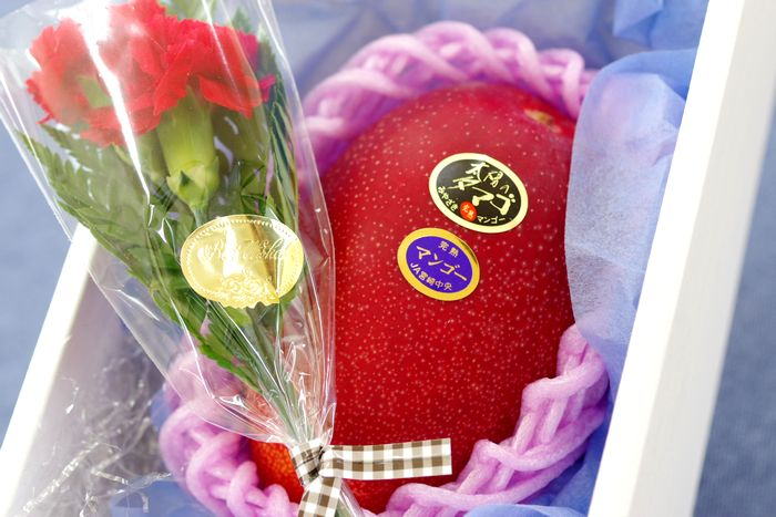 母の日マンゴーギフト通信販売 宮崎太陽の卵糖度15度以上をプレゼントに。カーネーション付き。1玉