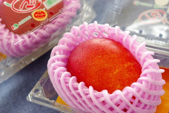 遅れてごめん。5月12日以降に到着。母の日マンゴーギフト通販 宮崎完熟まんごーをプレゼントに。カーネーション付き。1玉