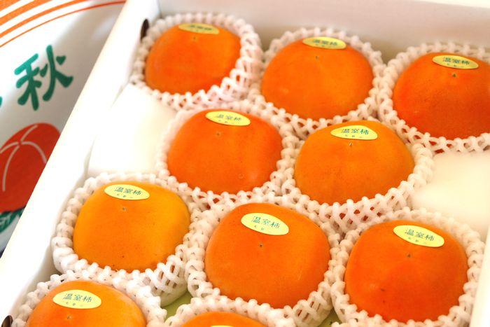 新秋柿(しんしゅうがき)通販販売 和歌山温室栽培で糖度約18度の柿を販売取寄。約10玉~約14玉 和歌山産