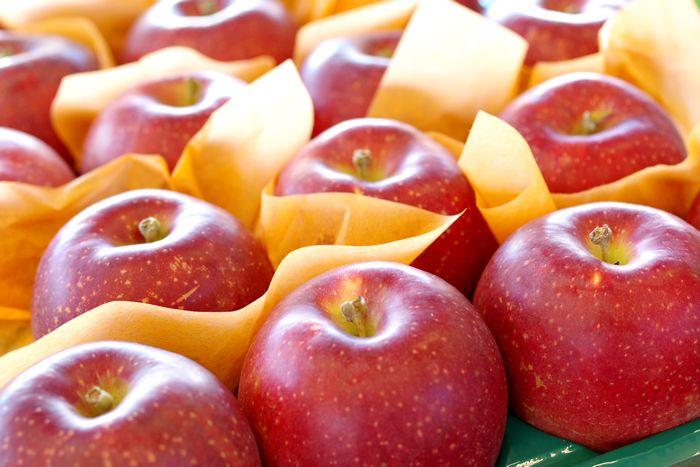 紅いわてりんご取寄販売 岩手県オリジナルの紅りんごを通販で。約5kg 約14玉~約18玉 岩手県産