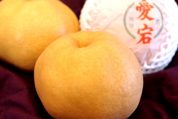あたご梨 愛宕梨通販 お歳暮に大きい和梨を販売。約2玉~約3玉 鳥取・岡山・他産地