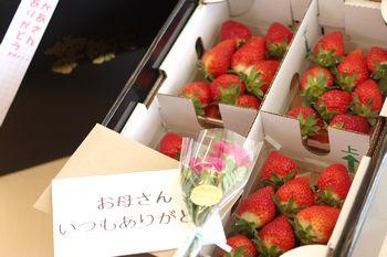 母の日いちごギフト通販 苺をお母さんにプレゼントに。カーネーション付き。4パック入 山形産・他産地