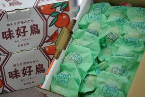 味好鳥みかん(あじこうちょう)通信販売 お歳暮長崎みかんに。高糖度13度以上の袋入 約4kg
