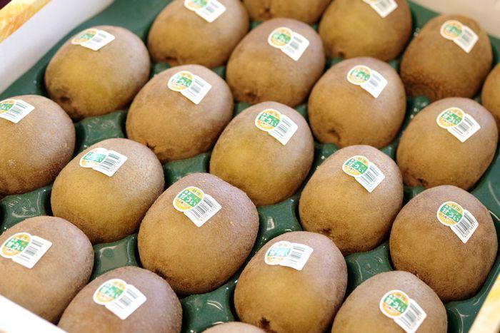 甘ういキウイフルーツ販売 果肉が黄色 福岡県産の通販お取り寄せ 約24玉~約36玉