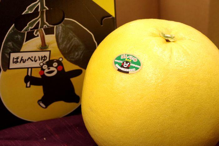 晩白柚(ばんぺいゆ)通販 熊本県八代産の特大柑橘を販売取寄。1玉 熊本産