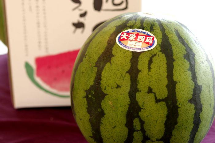 大栄西瓜通販。鳥取県大栄西瓜組合協議会 L〜4L 1玉