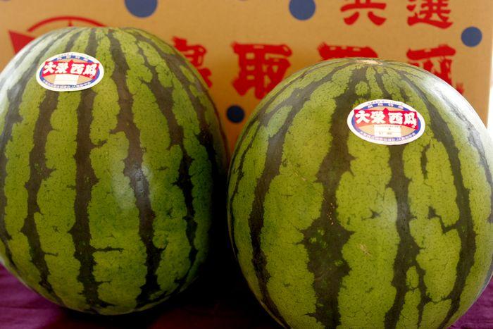 大栄西瓜通信販売。鳥取県大栄西瓜組合協議会 L〜4L 2玉