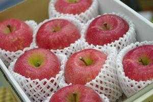 山形ふじりんご通信販売 朝日町・村山地域お歳暮サンふじを販売取寄。5kg 約14玉~約18玉