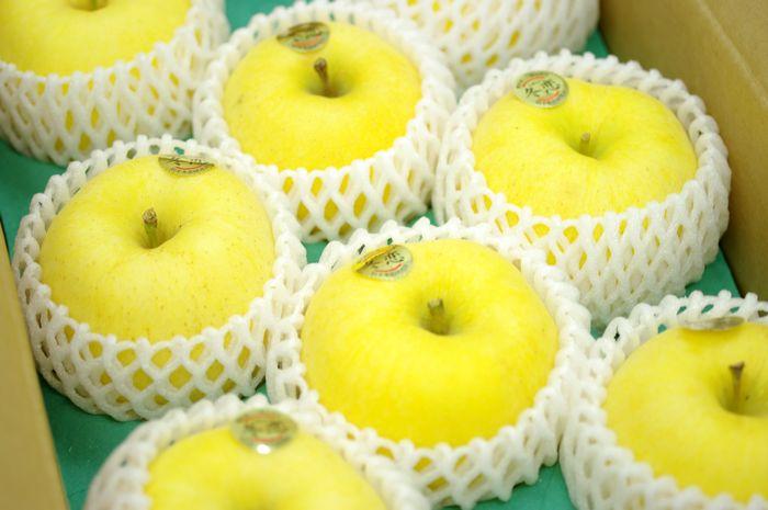 冬恋はるかりんご通信販売 岩手県お歳暮林檎 糖度15度以上を販売取寄。約7玉~約9玉