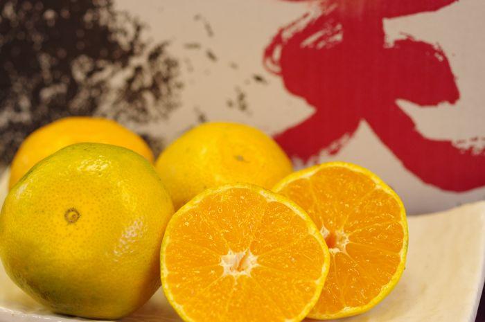 極早生みかん 紀南の木熟みかん 天(てん) 糖度11度以上 5kg S~L 和歌山県産 10月中旬から10月下旬頃