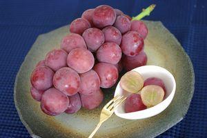 ゴルビー葡萄通販 大粒で種が無く高糖度な赤ぶどうを販売取寄。1房 約550g 山梨・他産地
