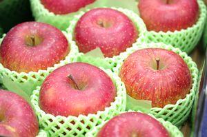 飯綱ふじりんごグルメ16通信販売 長野県糖度17度お歳暮サンふじりんごを販売取寄。中箱 約7玉~約9玉
