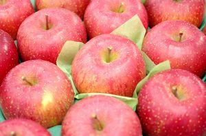 飯綱ふじりんごグルメ16取寄販売 長野県糖度17度お歳暮サンふじりんごを通販で。約5kg 約14玉~約18玉