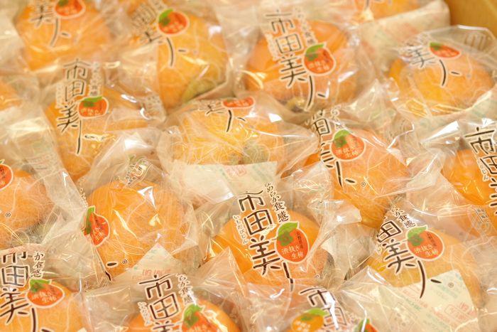 市田美人 市田柿を脱渋した生柿 長野県 JAみなみ信州産 約23個