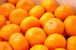寿太郎(じゅたろう)みかん通販 JAなんすん西浦みかんを販売取寄。糖度12・5度以上 約10kg S~2L 静岡県産