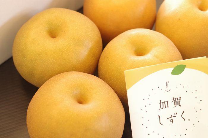加賀しずく 石川県オリジナルの和梨 約5玉~約12玉